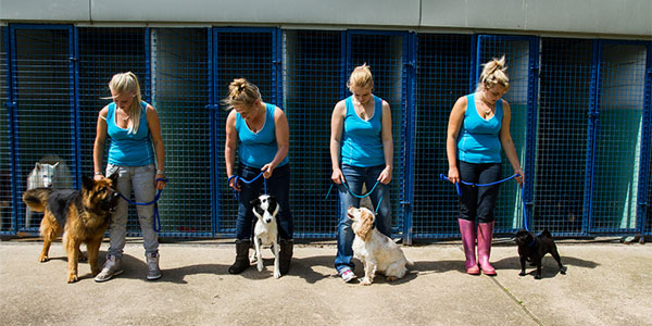 Jaycliffe Pets Staff